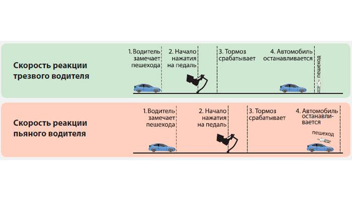 Сравнение реакций трезвого и пьяного водителей