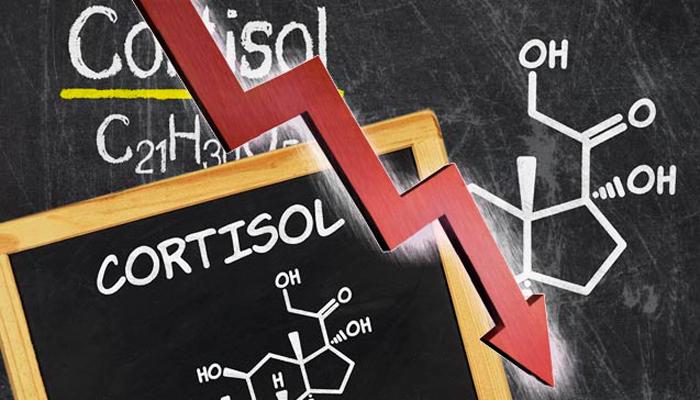 Снижение уровня кортизола при хроническом алкоголизме