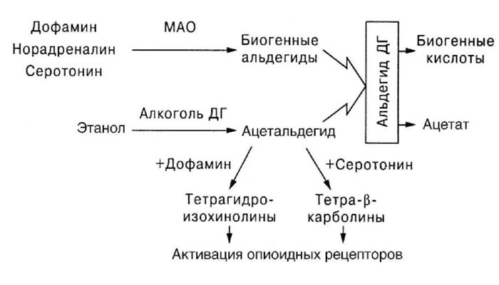 Схема действия этанола на рецепторы