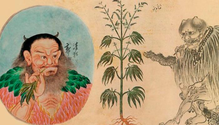 Употребление конопли в Древнем Китае