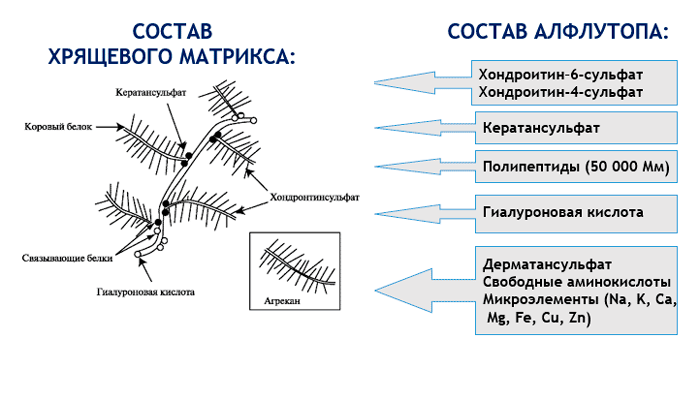 Состав лекарства Алфлутоп