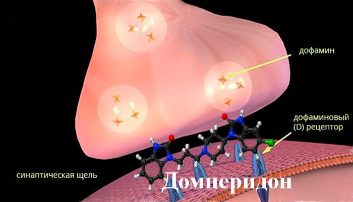 Воздействие домперидона на дофаминовые рецепторы
