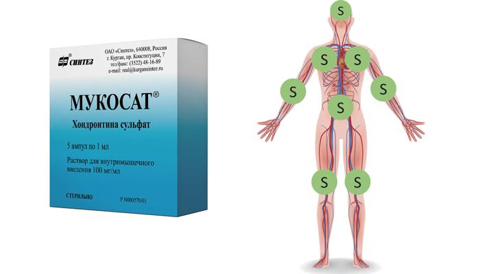 Снабжение организма серой при употреблении препарата Мукосат