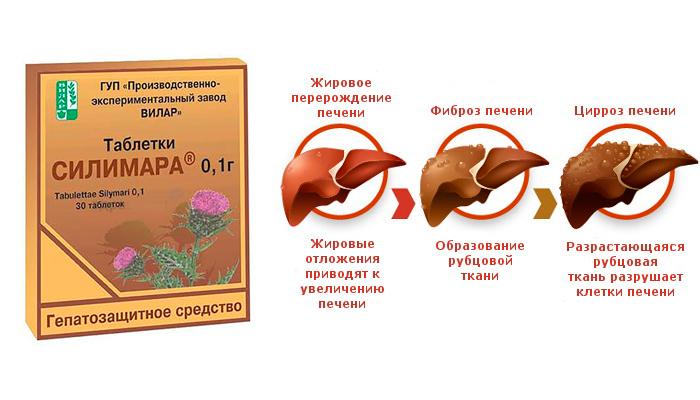Применение лекарственного средства Салимар при заболеваниях печени