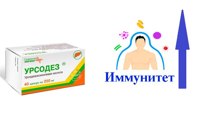 Стимуляция иммунитета при применении лекарственного средства Урсодез