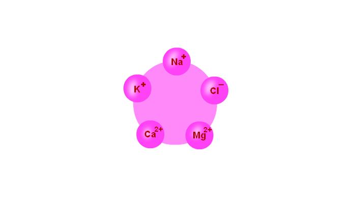 Химические элементы электролиты